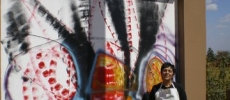 pintura-mural-2009-sonia-albuquerque